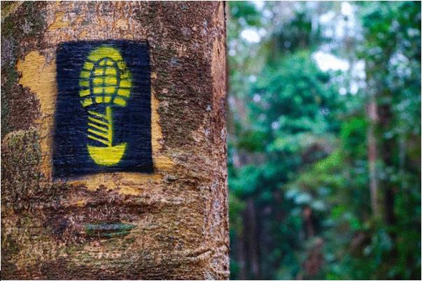Rede de trilhas no Brasil ganha novos trajetos