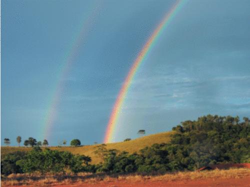 Bioparque Serra Negra: aliando ecoturismo e conservação