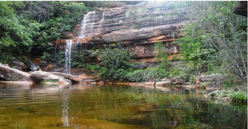 Parques Nacionais voltam a operar de forma gradual e monitorada
